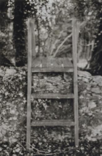 Lauren Seatter-Messer - The Ladder at Stockman Cottage